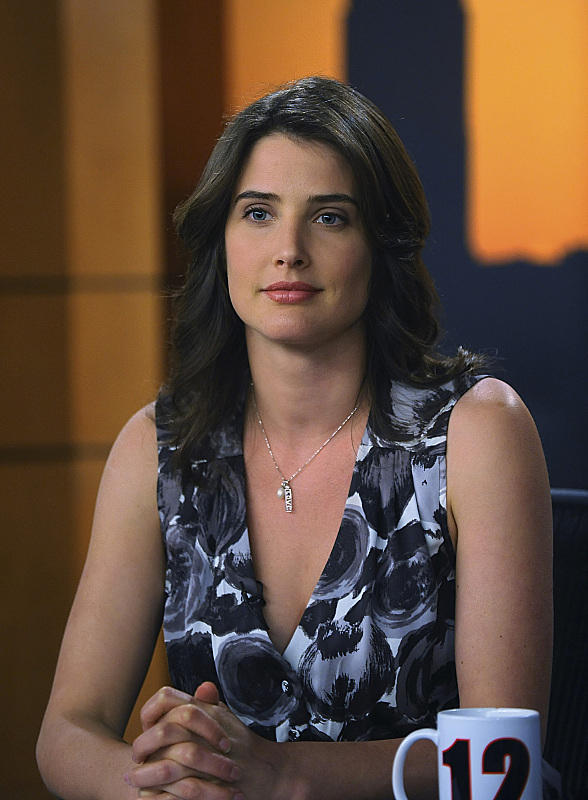 How i met your mother who almost played robin instead of cobie