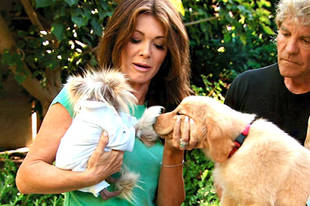 Lisa Vanderpump Threatening to Leave RHoBH Unless Brandi Glanville Is Fired — Report