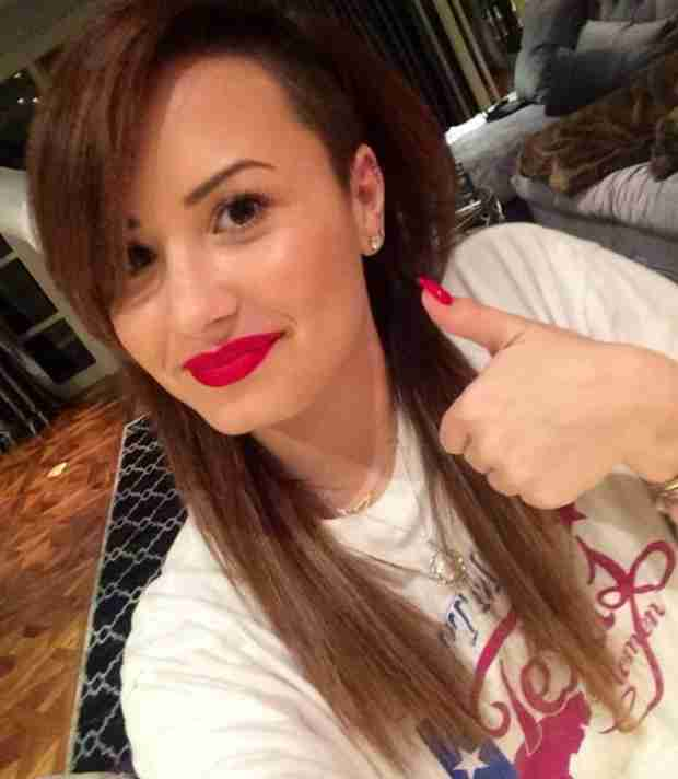 Demi Lovato Goes Back to Brunette — Bye Bye, Pink! (VIDEO)