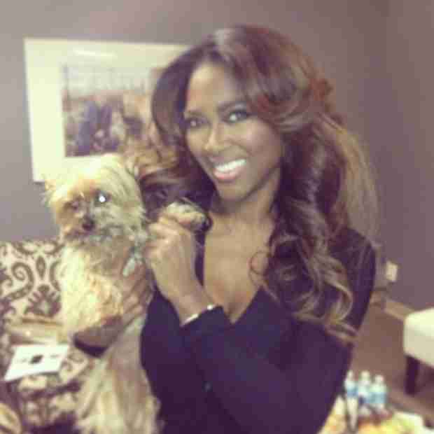 Kenya Moore Slams Rumors She Faked Her Dog's Death