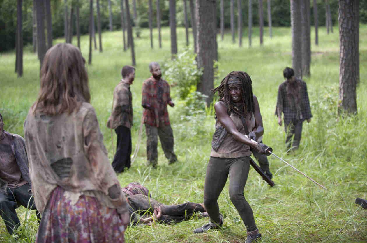 Danai Gurira's 3 Best Scenes as Michonne on The Walking Dead Season 4