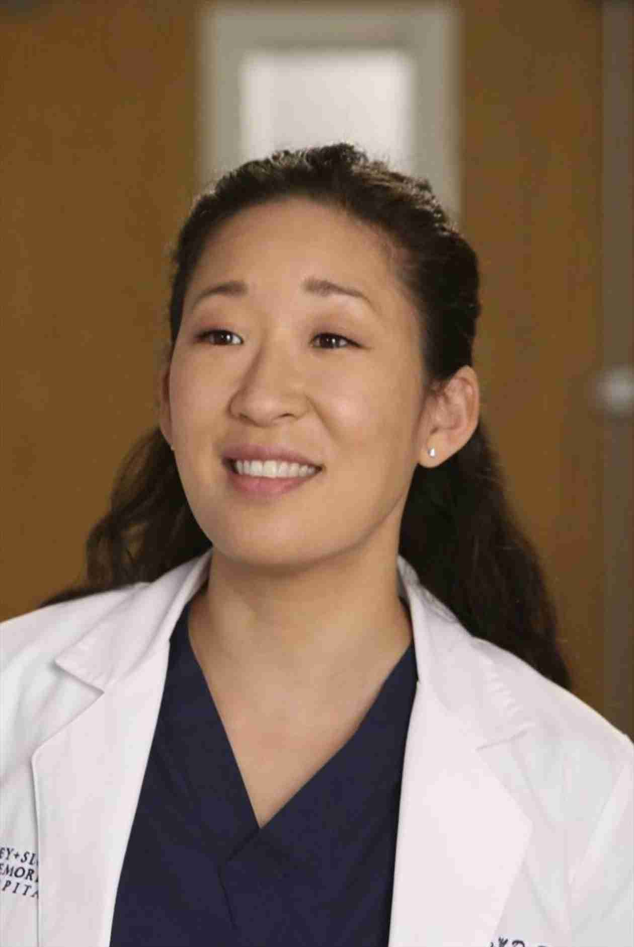Grey's Anatomy Season 10: Will Cristina Win the Harper Avery Award?