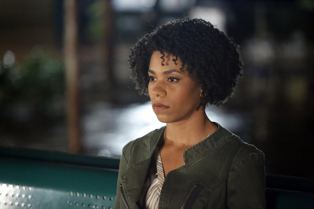 Who Is Doctor Maggie Pierce on Grey's Anatomy?