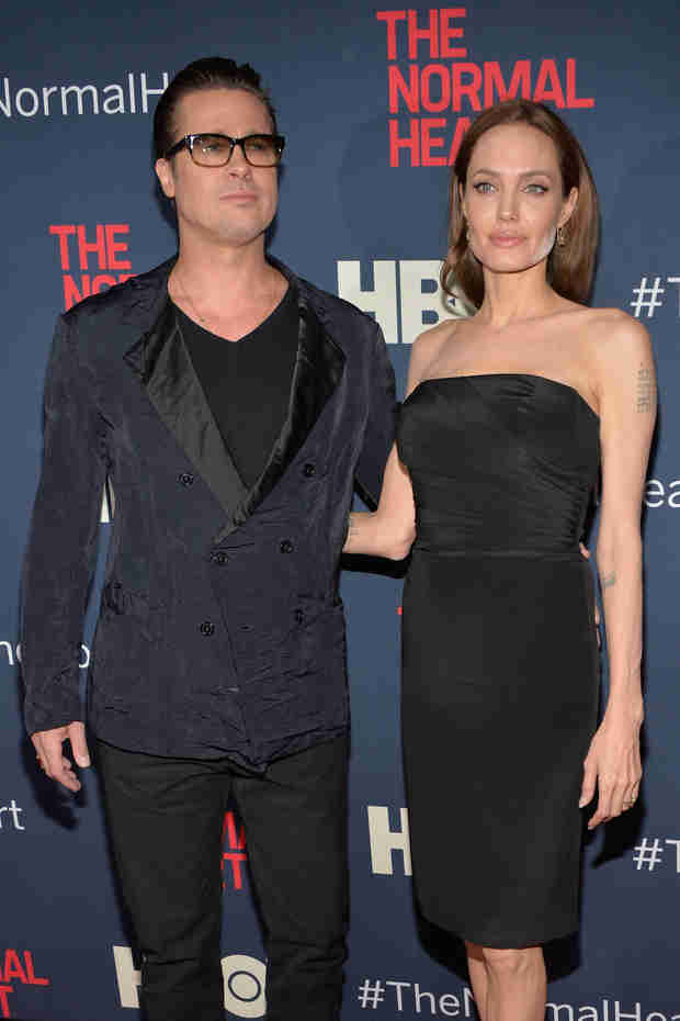 """Brad Pitt Giving Up Acting? """"I'm a Farmer Now,"""" He Says (VIDEO)"""