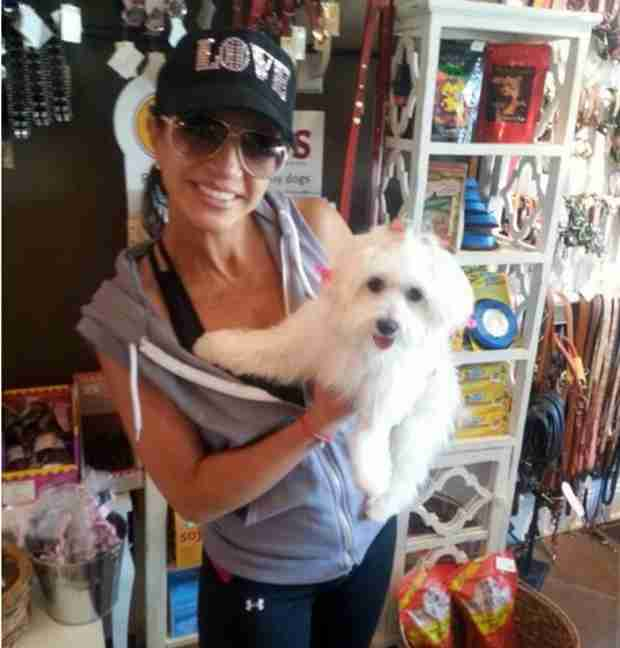 Teresa Giudice's Dog Gets Adorable Makeover (PHOTO)