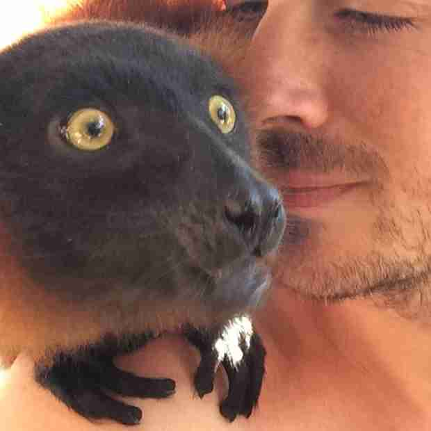 Shirtless Ian Somerhalder Poses With a Lemur on Necker Island (PHOTO)