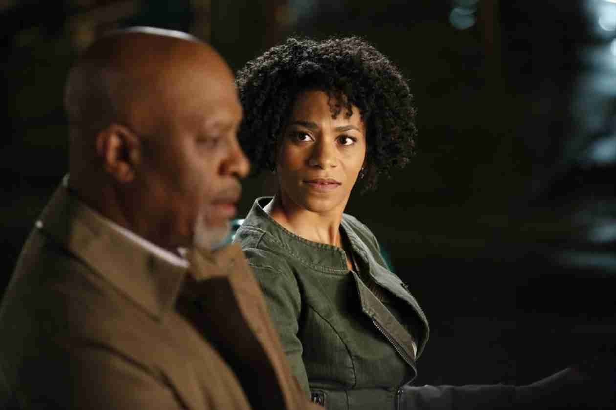 Who Is Kelly McCreary, Who Plays Grey's Anatomy's New Doc, Maggie Pierce?