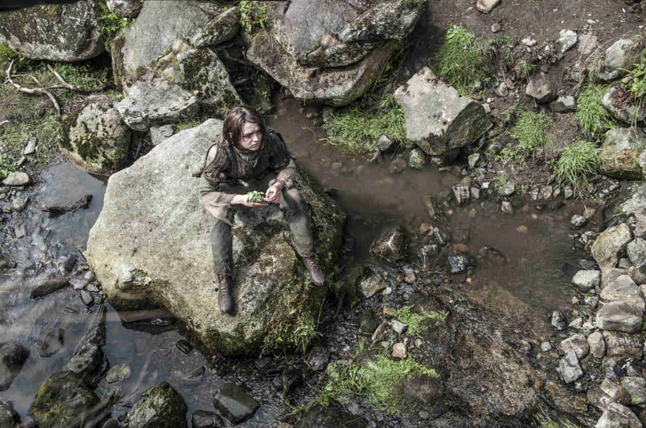 "Game of Thrones Season 5 Spoilers: A ""Great"" Story for Arya"