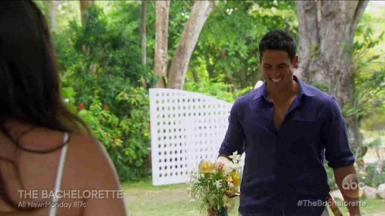 Bachelorette 2014 Season Finale Recap: Does Andi Dorfman Pick Nick or Josh?