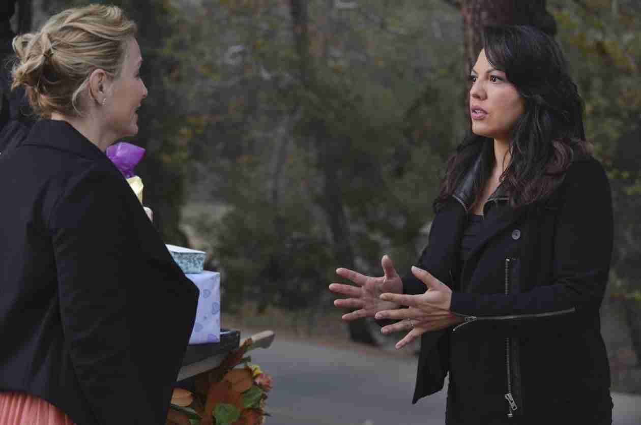 Grey's Anatomy Season 11: A Surrogate Won't Fix Callie and Arizona's Problems
