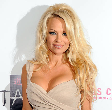 Pamela Anderson and Rick Salomon Divorcing, Again — Report (VIDEO)