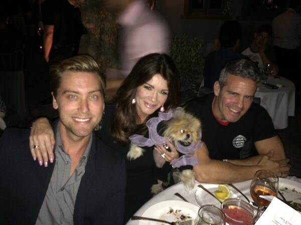 Lisa Vanderpump and Lance Bass Host Dog Adoption Event (PHOTO)
