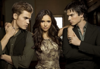 Will Nina Dobrev Return For The Vampire Diaries's Final Season?