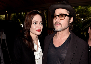 Everything We Know About the Brangelina Divorce After Their Plane Fight