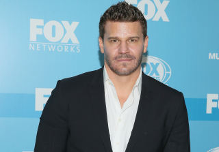 'Bones' Star David Boreanaz Suffering From Mysterious Illness — Report