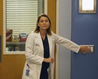 Grey's Anatomy Season 12, Ellen Pompeo, Meredith Grey