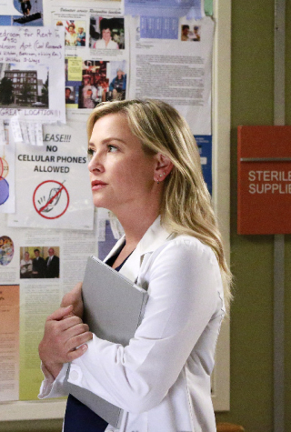 Grey's Anatomy Season 12, Jessica Capshaw, Arizona Robbins