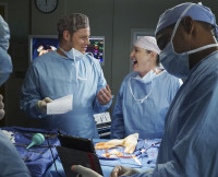 Grey's Anatomy Season 12, Justin Chambers, Jessica Capshaw
