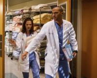 Grey's Anatomy | Wetpaint, Inc.