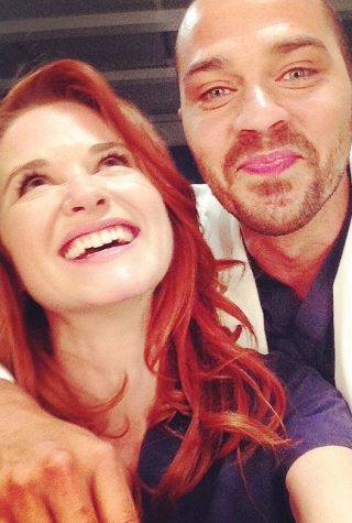 Grey's Anatomy Season 12, Jackson, April, Sarah Drew, Jesse Williams