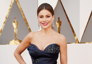 Celebs Hit the 2016 Oscars Red Carpet! (PHOTOS)