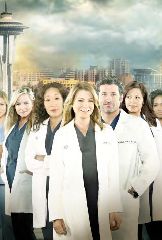 Grey's Anatomy Season 10 cast, KEVIN MCKIDD, JUSTIN CHAMBERS, CHANDRA WILSON, GAIUS CHARLES, TESSA FERRER, JESSICA CAPSHAW, SANDRA OH, ELLEN POMPEO, PATRICK DEMPSEY, SARA RAMIREZ, JERRIKA HINTON, CAMILLA LUDDINGTON, SARAH DREW, JESSE WILLIAMS, JAMES PICKENS JR.