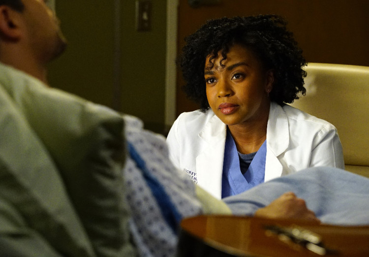 Grey's Anatomy Season 12, Wilmer Valderrama, Kyle Diaz, Jerrika Hinton, Stephanie Edwards