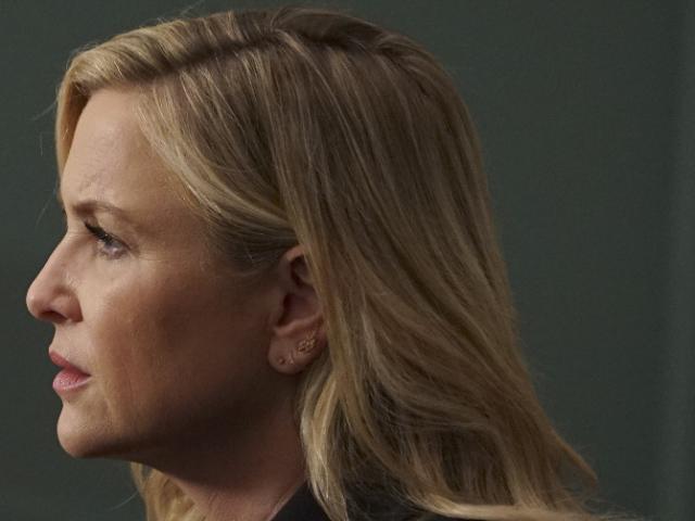 Grey's Anatomy Season 12, Jessica Capshaw, Arizona Robbins