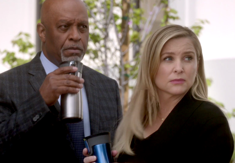 Jessica Capshaw pregnant, Grey's Anatomy Season 12, Episode 22, Arizona Robbins, James Pickens Jr., Richard Webber