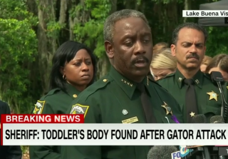 2-Year-Old Boy Killed By Alligator at Disney Resort Identified (PHOTO)
