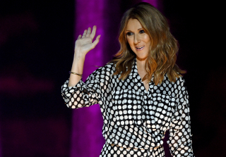 Céline Dion Moving on With Handsome, Young Guitarist Kevin Girouard — Report