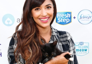 Hannah Simone on 'New Girl,' 'Kicking & Screaming,' & Being a Cat Lady — Exclusive
