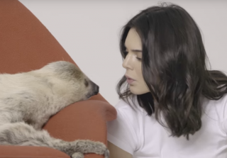 Kendall Jenner Befriends a Sloth, Slam Dunks in Heels in Funny New Video
