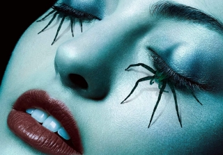 What Will Be the Theme of 'American Horror Story' Season 6? (POLL)