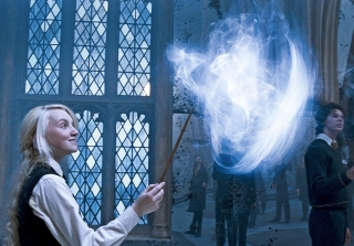 Pottermore Patronus Quiz Assigns Spirit Animals to Us All