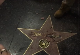 Watch This Man Destroy Donald Trump's Hollywood Walk of Fame Star (VIDEO)